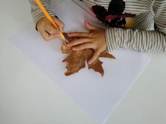 Sonbahar: kuru yaprak çiziyoruz